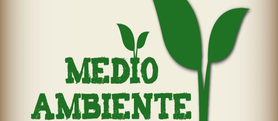 medioambiente-1441127521353